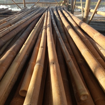 Treated bamboo poles ready for construction